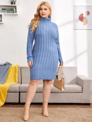 WOMEN Plus Turtle Neck Ribbed Knit Sweater Dress