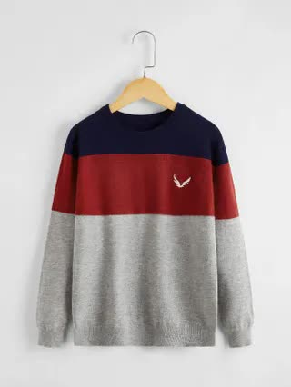 KIDS Boys Embroidered Detail Color Block Sweater