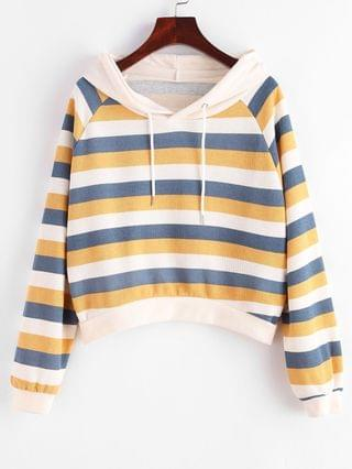 WOMEN Stripes Raglan Sleeve Ribbed Hoodie - Multi-b Xl
