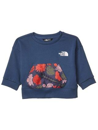 KIDS The North Face Kids - Back To School Short Sleeve Pullover (Little Kids/Big Kids)