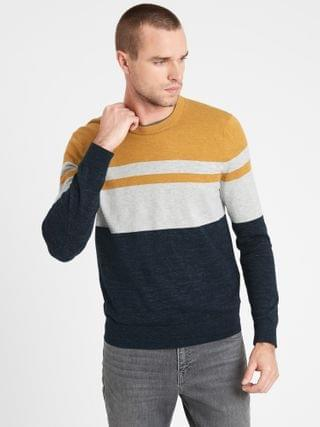 MEN Organic Cotton Stripe Sweater