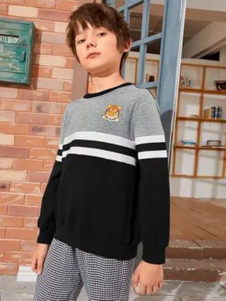 KIDS Colorblock Tiger and Striped Pullover