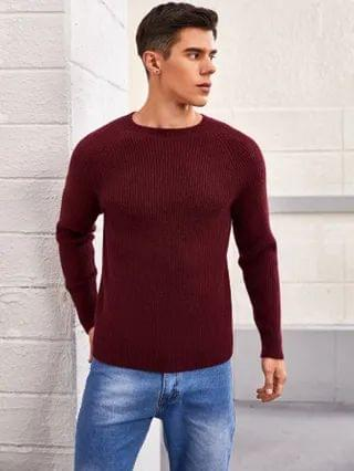 MEN Solid Raglan Sleeve Sweater