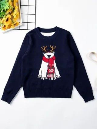 KIDS Christmas Pattern Crew Neck Sweater