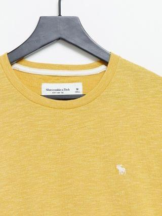 Abercrombie & Fitch icon logo t-shirt in gold