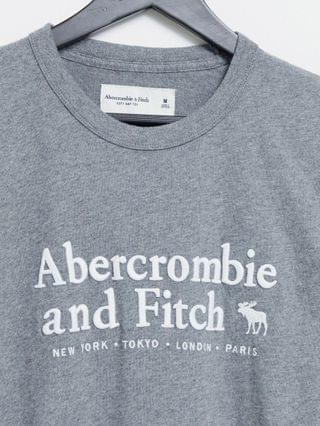 Abercrombie & Fitch elevated tech logo t-shirt in gray