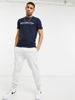 Abercrombie & Fitch elevated tech logo t-shirt in navy