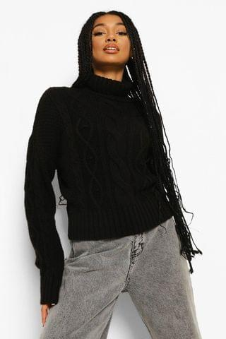 WOMEN Heavy Cable Knit Roll Neck Jumper
