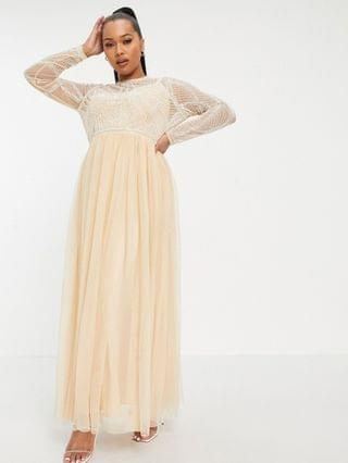 WOMEN Curve embellished bodice maxi dress with tulle skirt